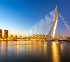 Escort Rotterdam 1